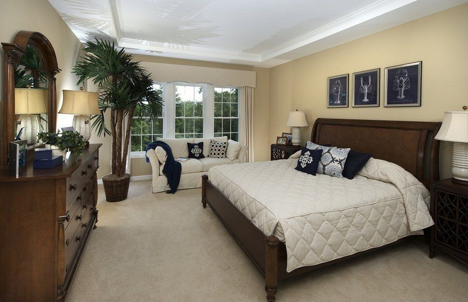 Traditional Master Bedroom With High Ceiling Standard Furniture