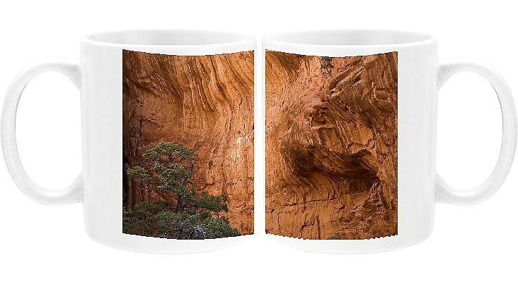 Photo Mug-Canyon wall, Arches National Park, Utah, USA-Ceramic dishwasher safe mug made in the UK