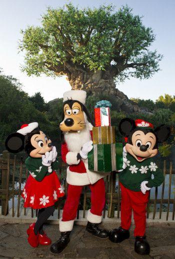 The 12 Days of Run Disney Christmas