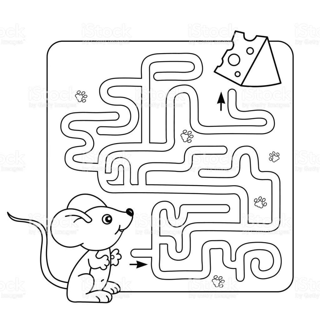 Cartoon Vector Illustration of Education Maze or Labyrinth Game for ...