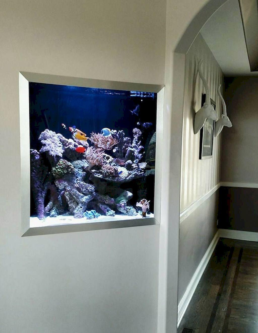 Wall Mounted Fish Tank And Aquarium Elonahome Com Fish Tank Wall Diy Fish Tank Wall Aquarium