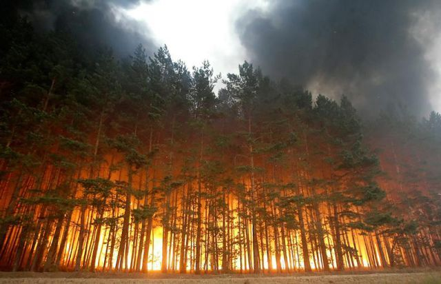natural disasters - forest fires (dry weather and winds)
