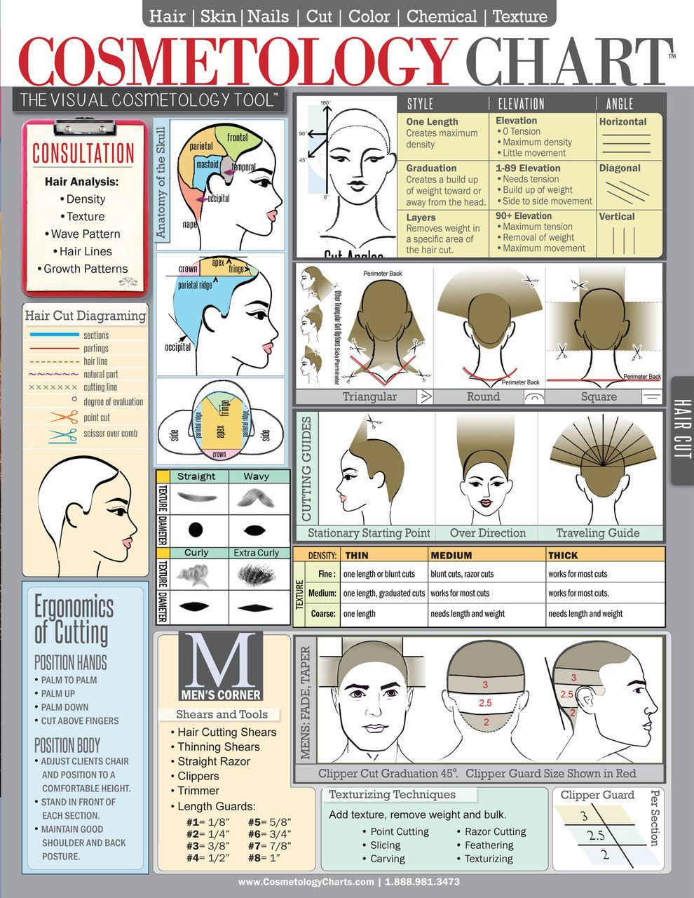Laminated Quick Reference Student Cosmetology Chart U0026 Study Guide