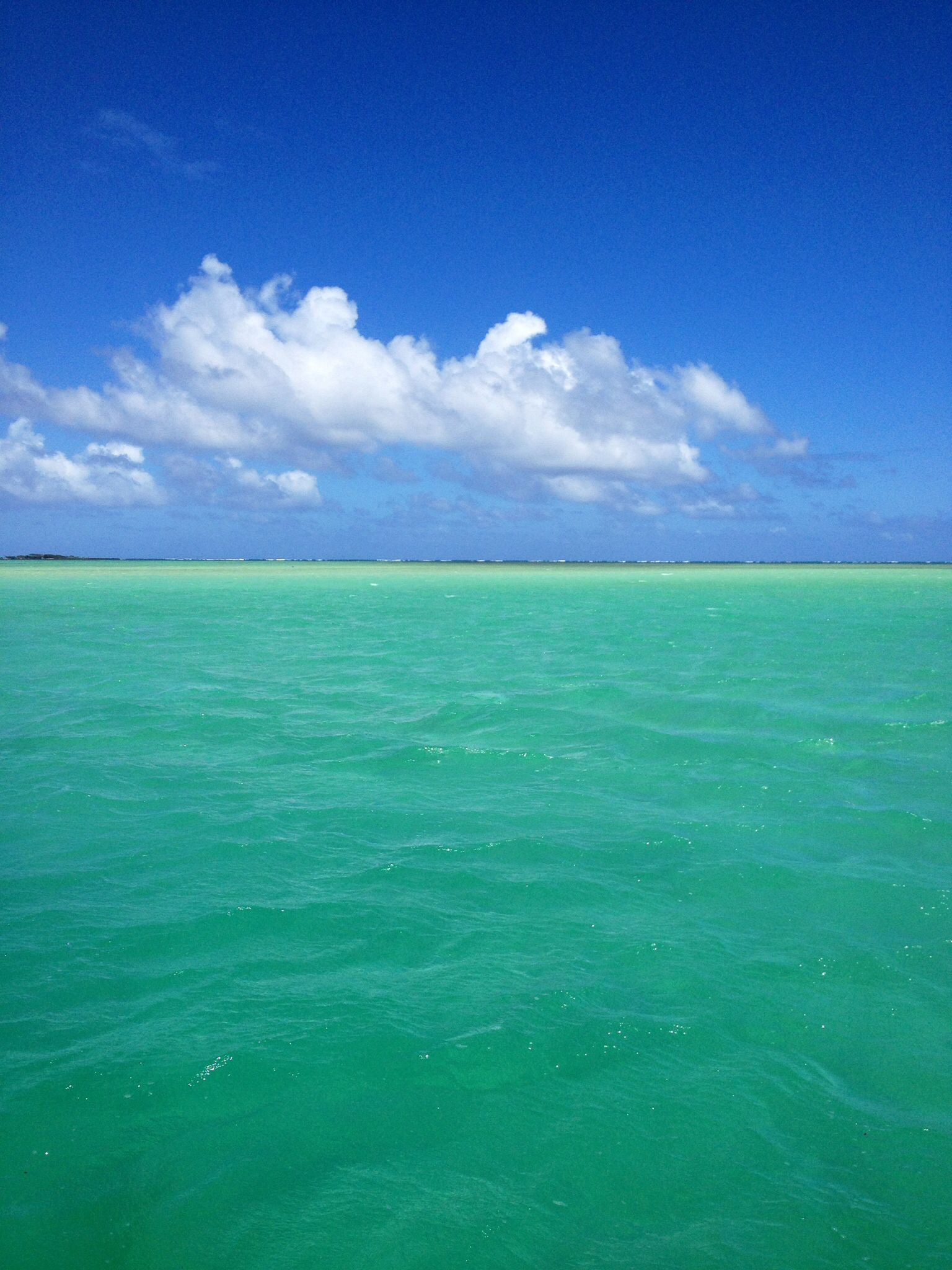 kaneohe bay sandbar this was the view from our backyard when i