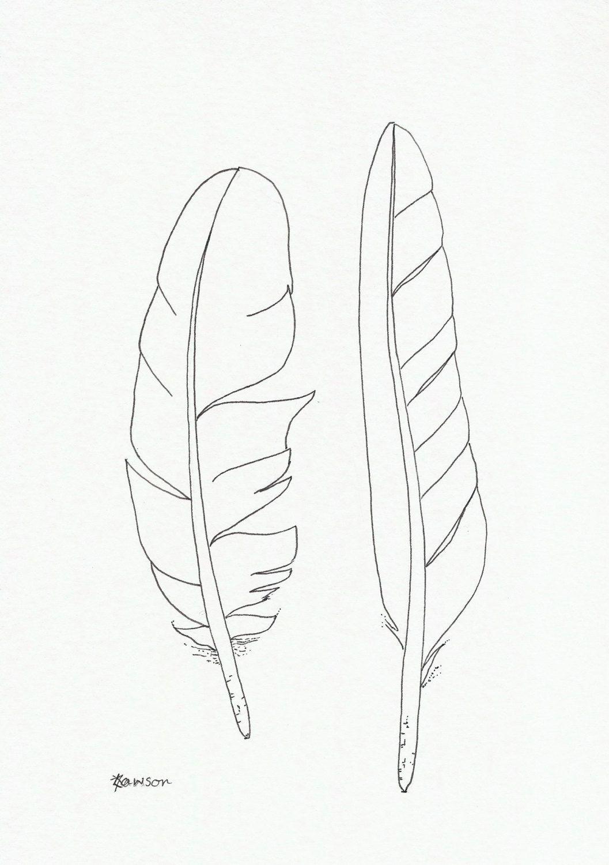 Original Tinte Feder zeichnen 2 Sea Bird-Federn (With