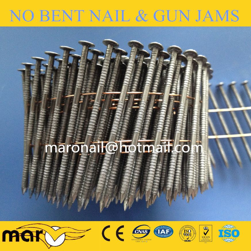 Common Coil Nail Roofing Nails Fence Nails Galvanized Nails
