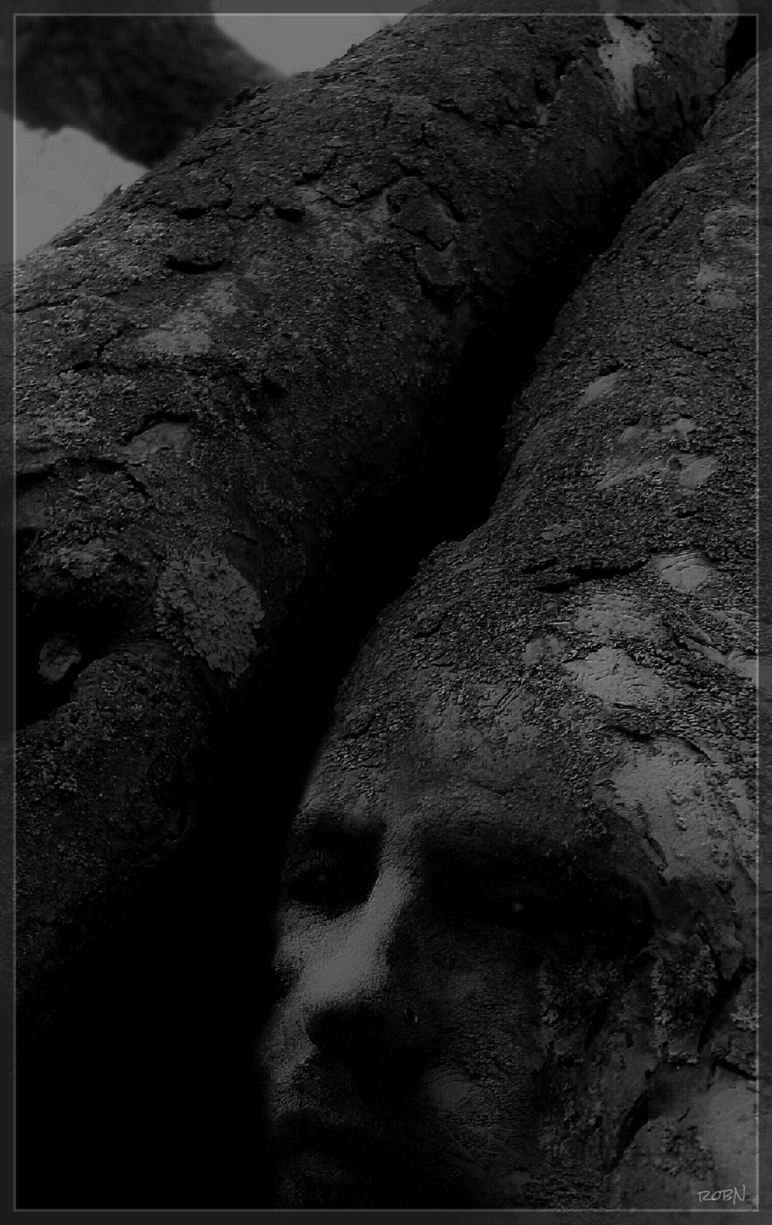 Waptreeoverlay photography blackandwhite double exposure and