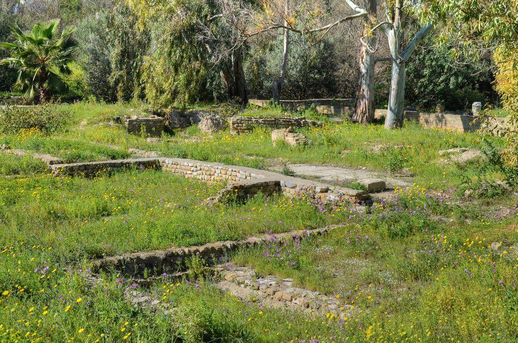 Vestiges phéniciens de Carthage http://bit.ly/1QrITQp
