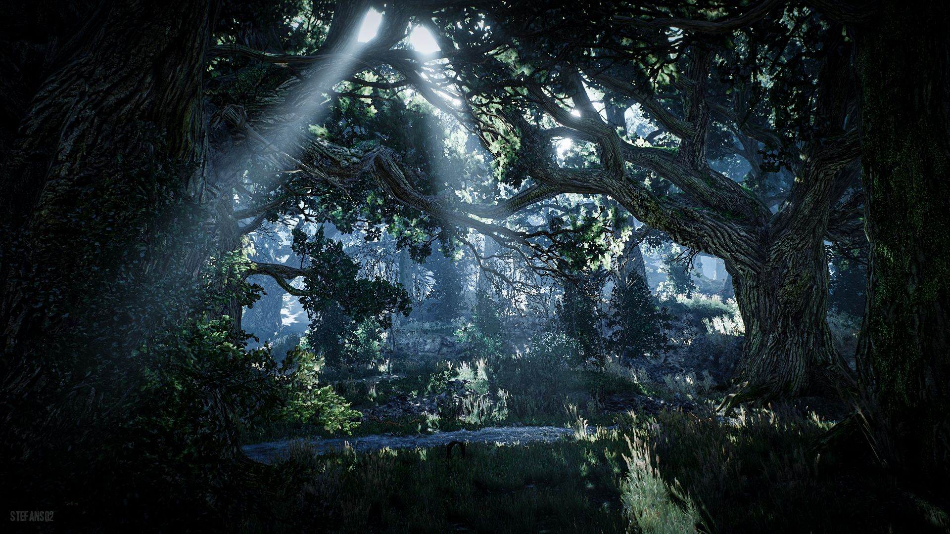 video game the witcher 3 wild hunt forest the witcher video gamevideo game the witcher 3 wild hunt forest the witcher video game wallpaper