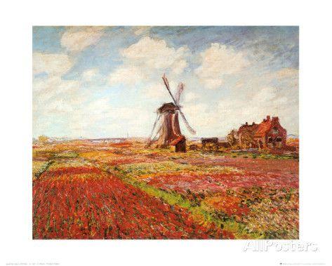 Tulip Fields with the Rijnsburg Windmill Kunstdrucke von Claude Monet bei AllPosters.de