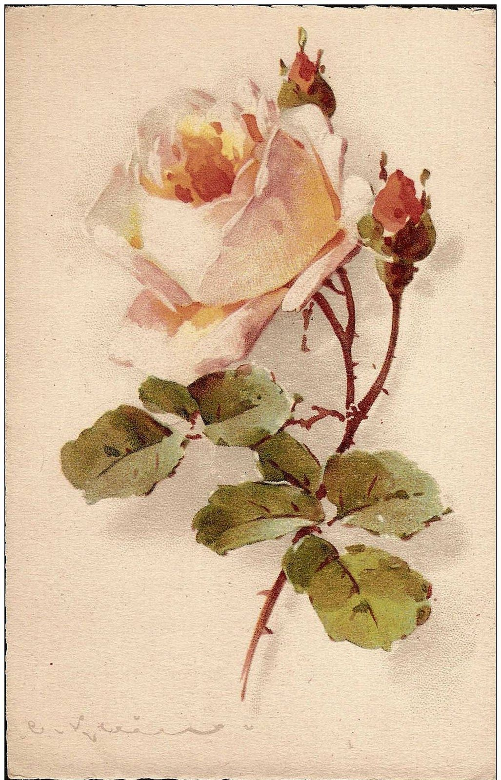 Цветы на старинных открытках, картинки сама такая
