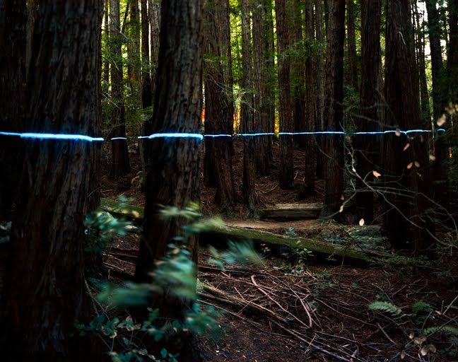 Underwood-2-Blue-Line-2010.jpg 648×512 piksel