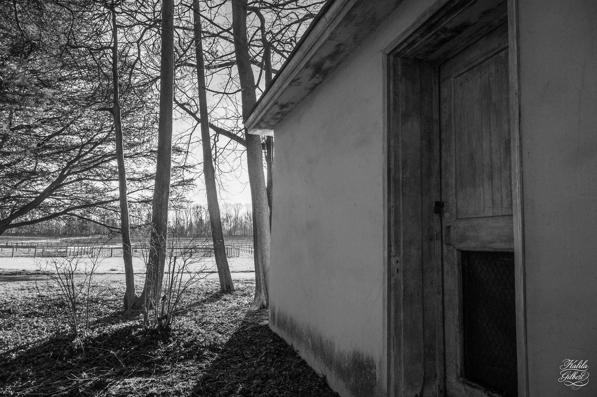 https://flic.kr/p/DSnJjY   Bellevue State Park in black and white