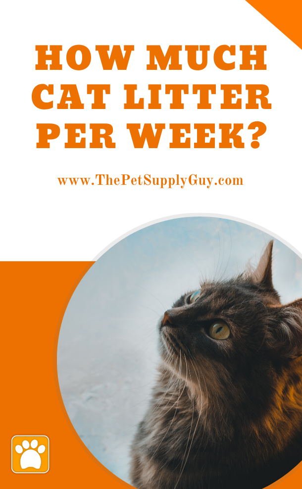 How Much Cat Litter Per Week Cats Pet Supplies Pets