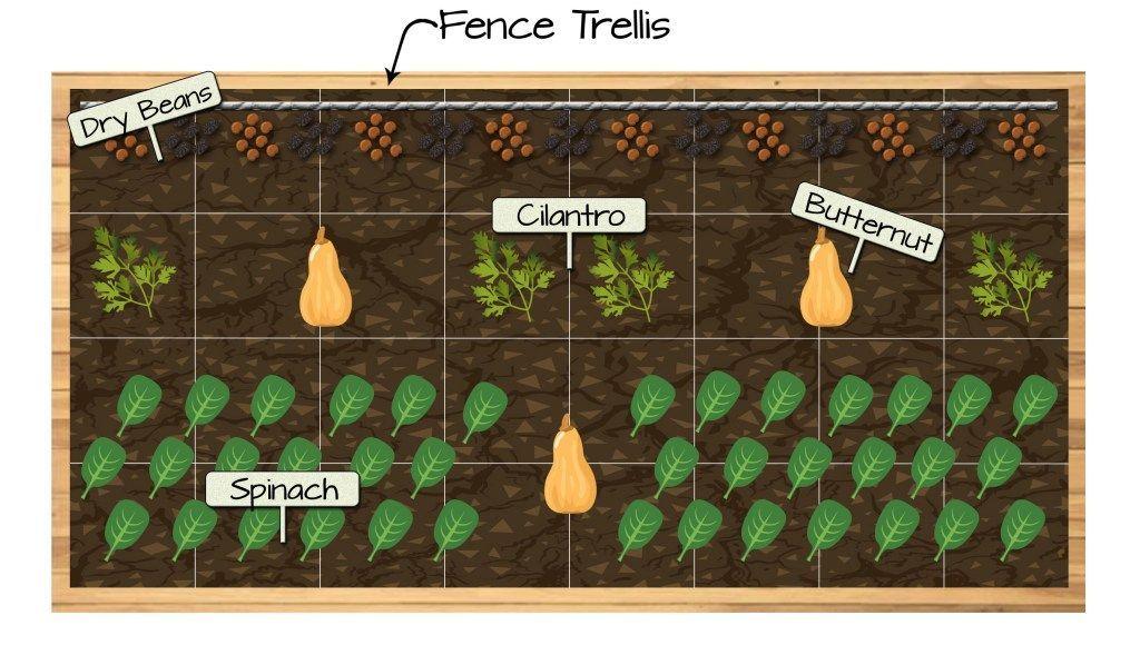 Raised Bed Vegetable Garden Plan Bed Garden Plan Raised Vegetable In 2020 Gemusehochbeet Gemusegarten Planer