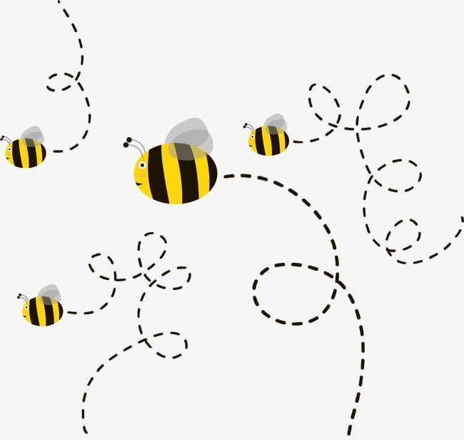 Cute Cartoon Bee Bee Cartoon Vector Bee Vector Png Transparent Clipart Image And Psd File For Free Download Bee Drawing Cartoon Bee Bumble Bee Cartoon