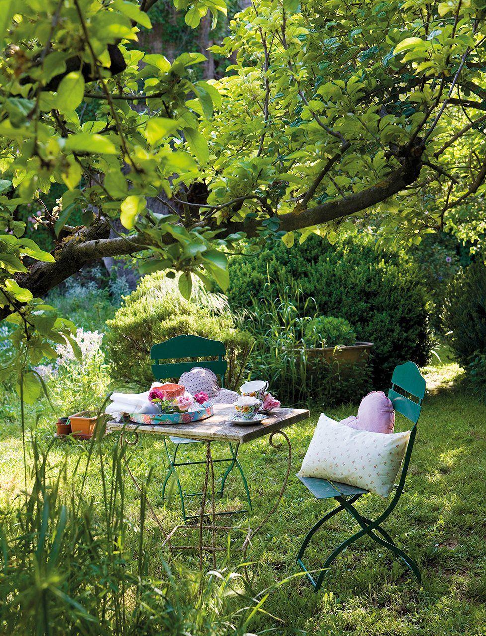 El jardín de la rescatadora de rosas | My dreems ...
