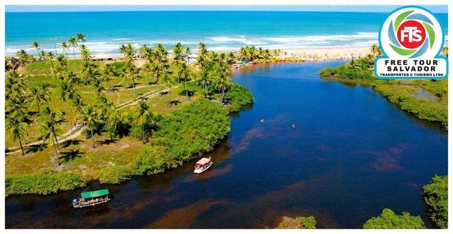 Praia De Imbassai Litoral Norte Bahia Com Imagens Litoral