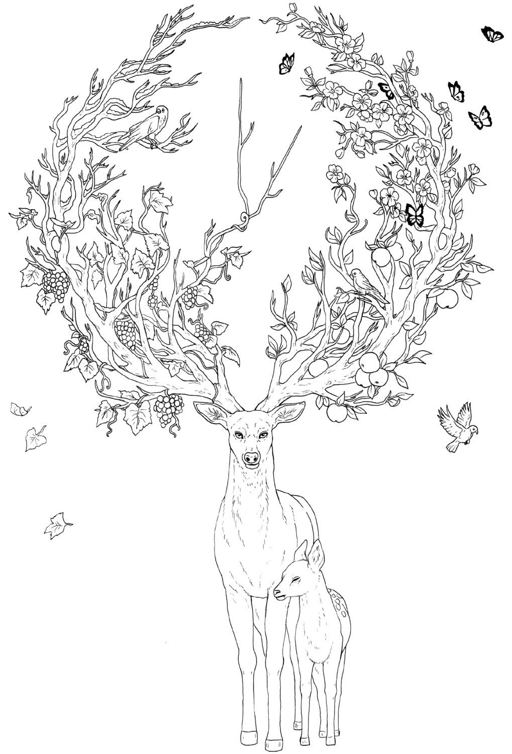 Limited Edition Coloring Book Crazy Animals By Animal Coloring Books Coloring Books Coloring Pages