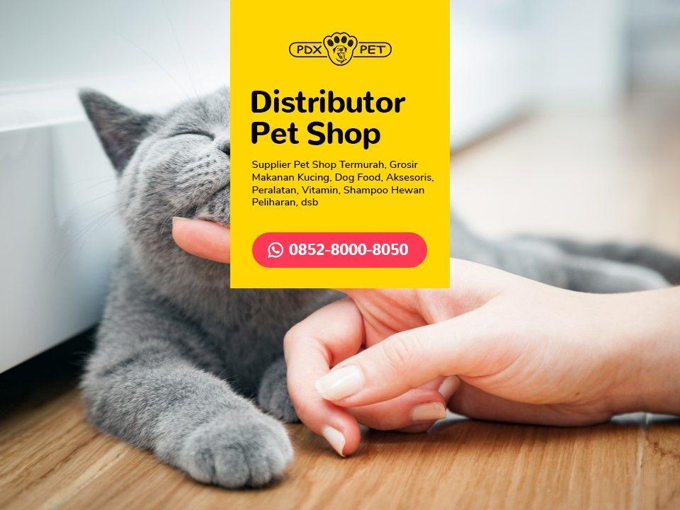 Terlengkap Wa 0852 8000 8050 Distributor Makanan Ikan Hias Makanan Kucing Makanan Anjing Perlengkapan Anjing