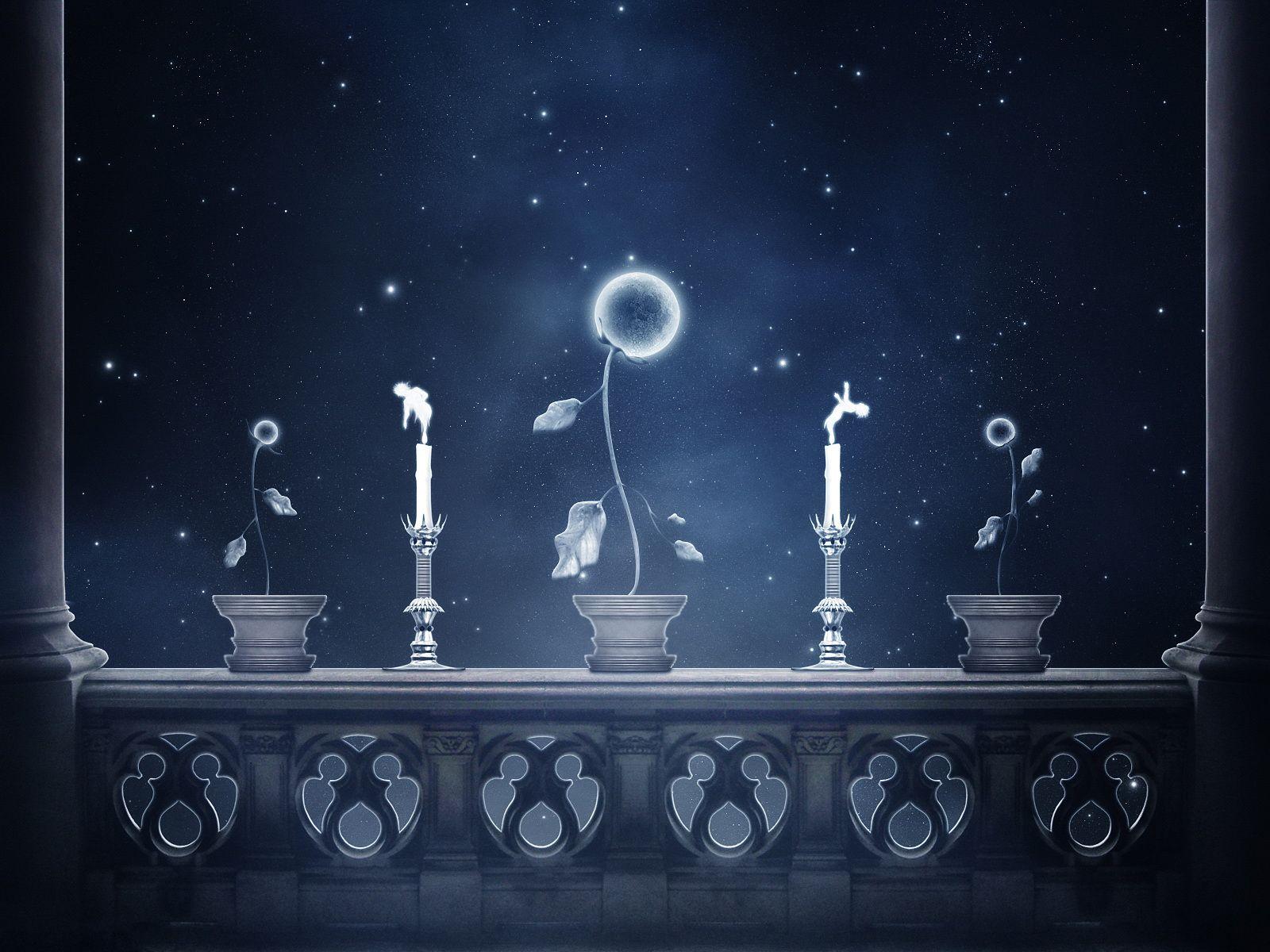 History of Art, История Искусства Moon flower, Night