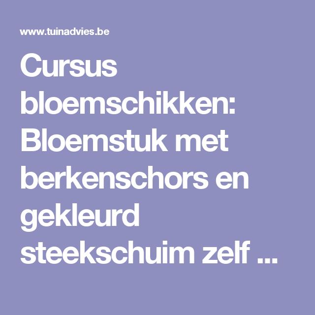 Cursus bloemschikken: Bloemstuk met berkenschors en gekleurd steekschuim zelf maken met handleiding en afbeeldingen
