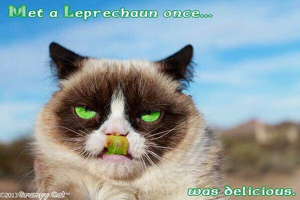 Funny grumpy cat leprechaun quote