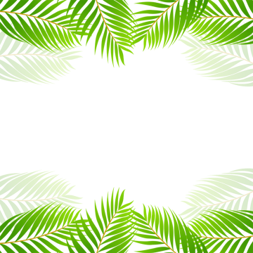 Green Tropical Border Vector Green Tropical Border Png Transparent Clipart Image And Psd File For Free Download Tropical Leaf Border Plant Vector 1605 leaves vectors & graphics to download leaves 1605. green tropical border vector green