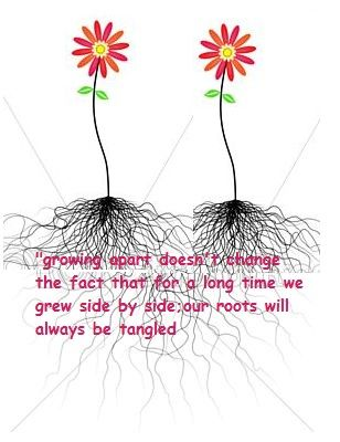 """growing apart doesn't change the fact that for a long time we grew side by side;our roots will always be tangled"