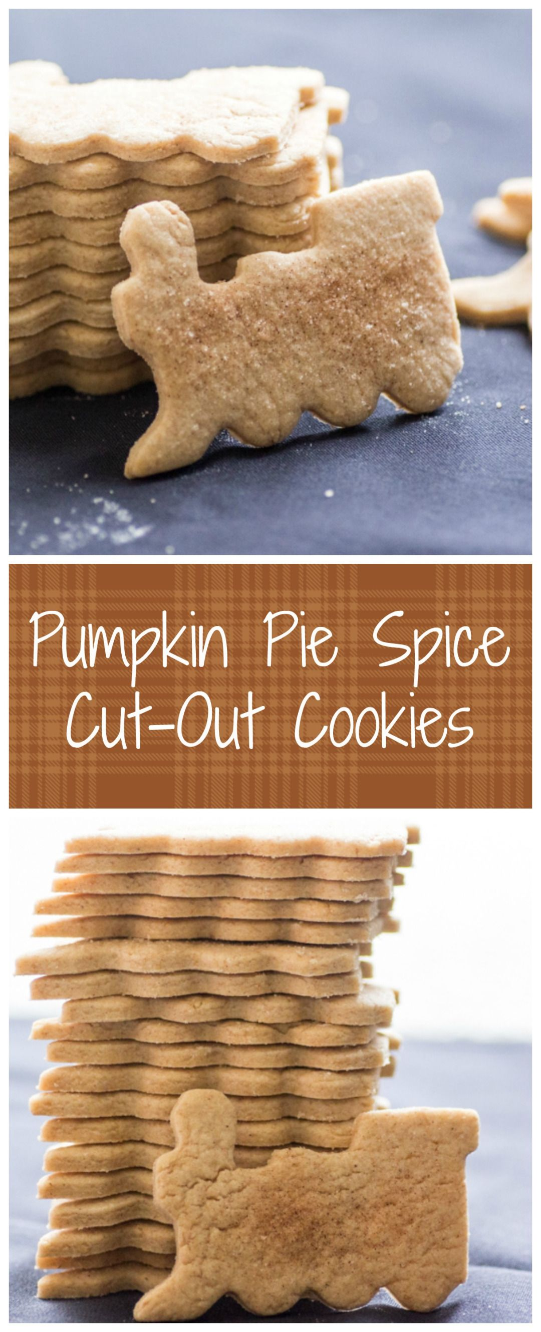 Pumpkin Pie Spice Cut-Out Cookies   Sew You Think You Can Cook   http://sewyouthinkyoucancook.com