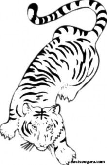 Printable Jungle Bengal Tiger Coloring Pages For Kids Printable