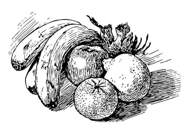 Malvorlage Obst Ausmalbild 17350 Zeichenvorlagen Zeichnung Kunstproduktion