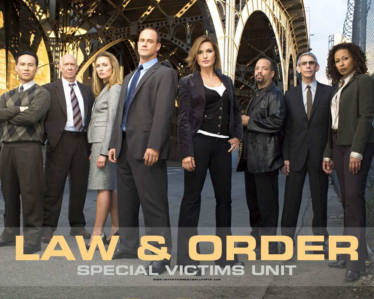 Law And Order Svu Poster 24inx36in