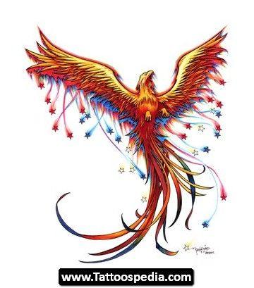 Phoenix Tattoo Meaning_12.jpg (360×409)