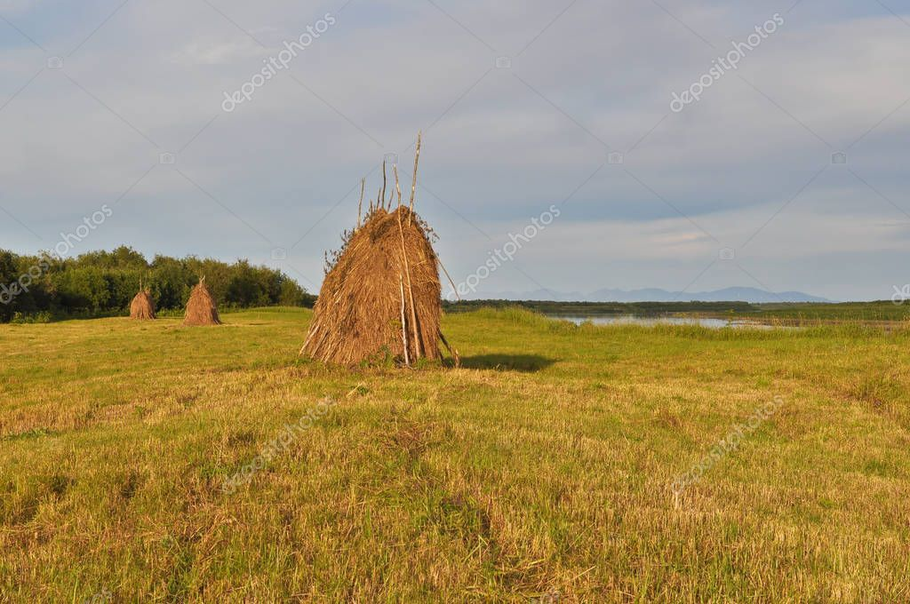 Haystack on the mowing. Stock Photo , sponsored,