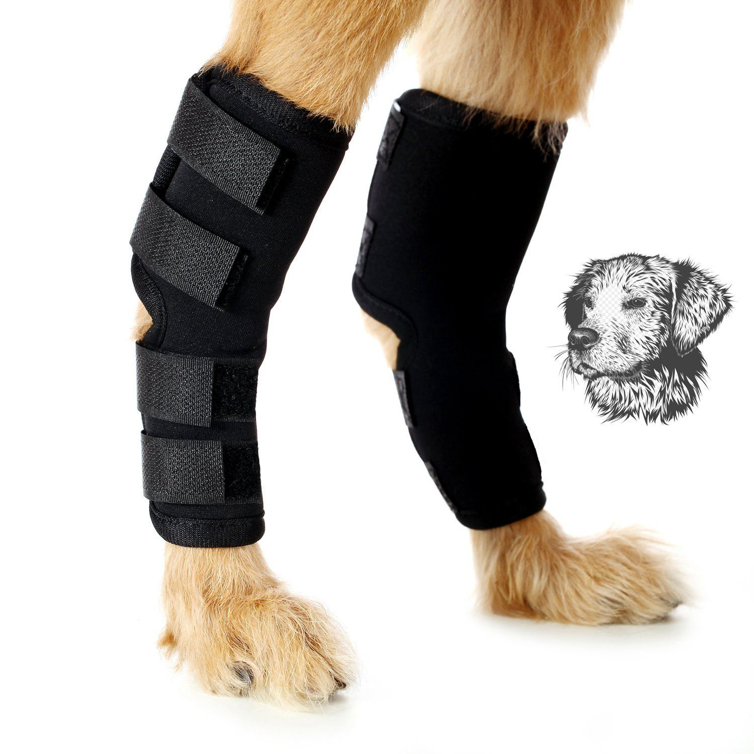 Dog Hock Joint Brace Veterinarian Approved Protect Dog