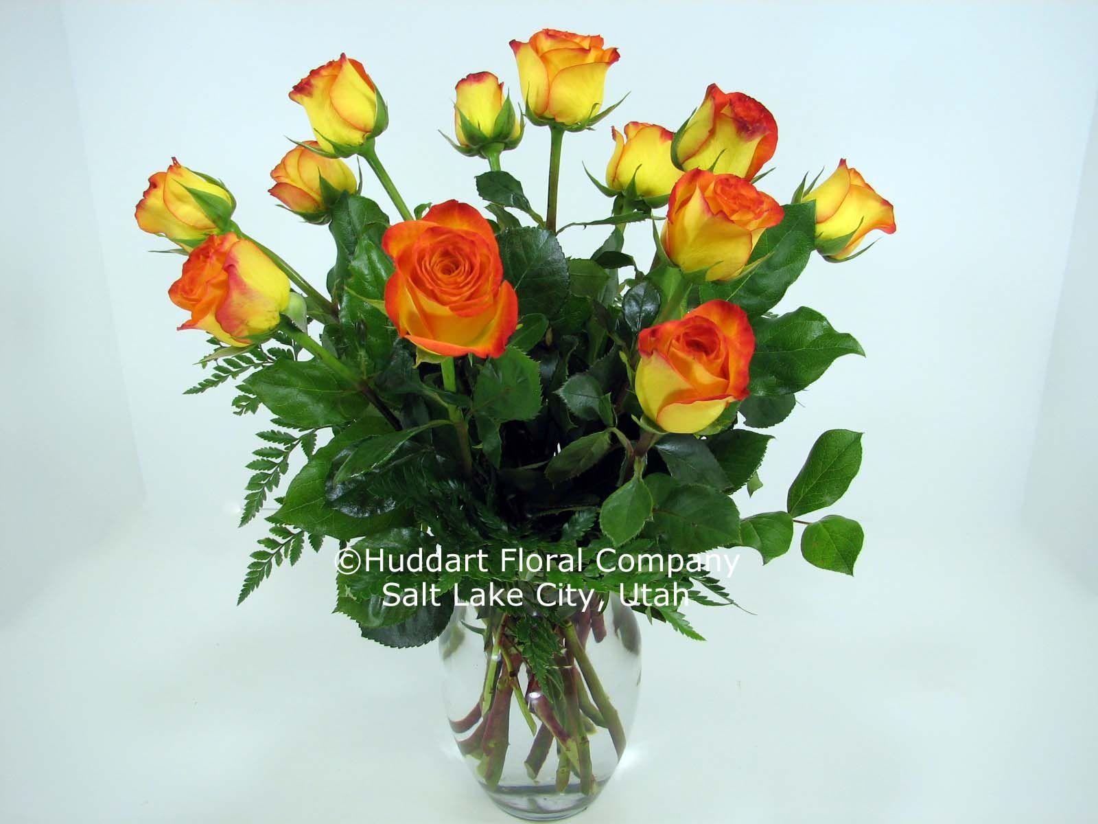 """Huddart Rose Specials"" Two dozen short stemmed roses"