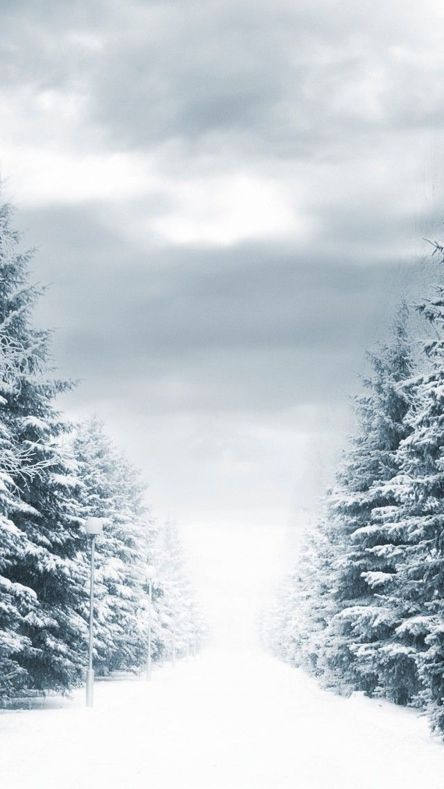 21 Amazing Winter iPhone Wallpaper : iPhone wallpaper - iphone background, wallpaper desktop, phone wallpaper #winter #snow #wallpaper