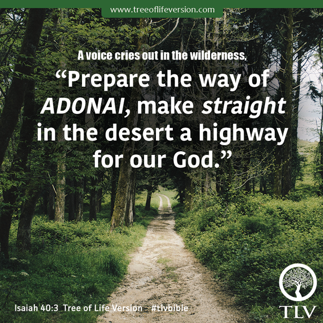 A Voice Cries Out In The Wilderness Prepare Way Of ADONAI Make Straight Desert Highway For Our God Isaiah 403 TLV Tlvbible