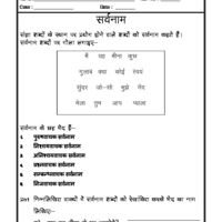Language Hindi Grammar Sangya Savnaam Pronoun Hindi Worksheets Grammar Workbook Grammar Worksheets
