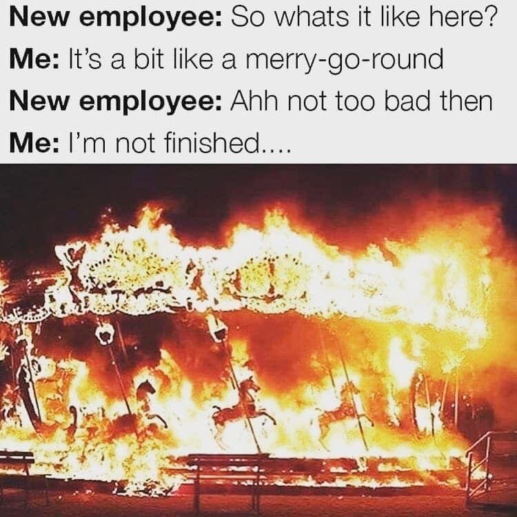 Lol! My last job for sure... Work memes, Clean humor