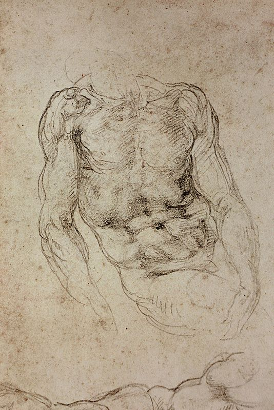 Study By Michelangelo Art Baby Art Pinterest Michelangelo
