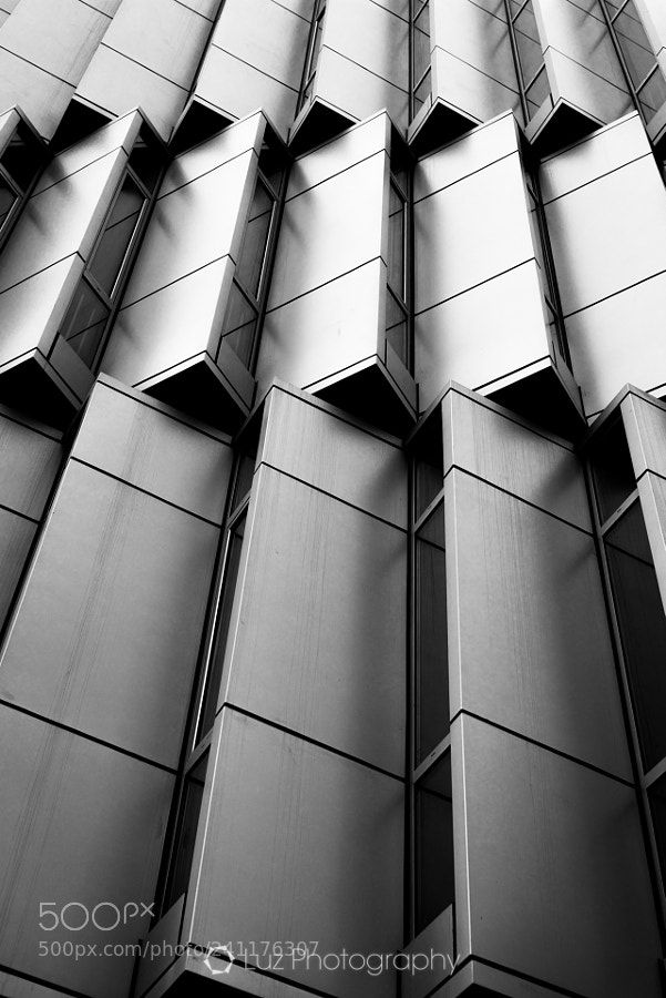 Windows by luz_photography