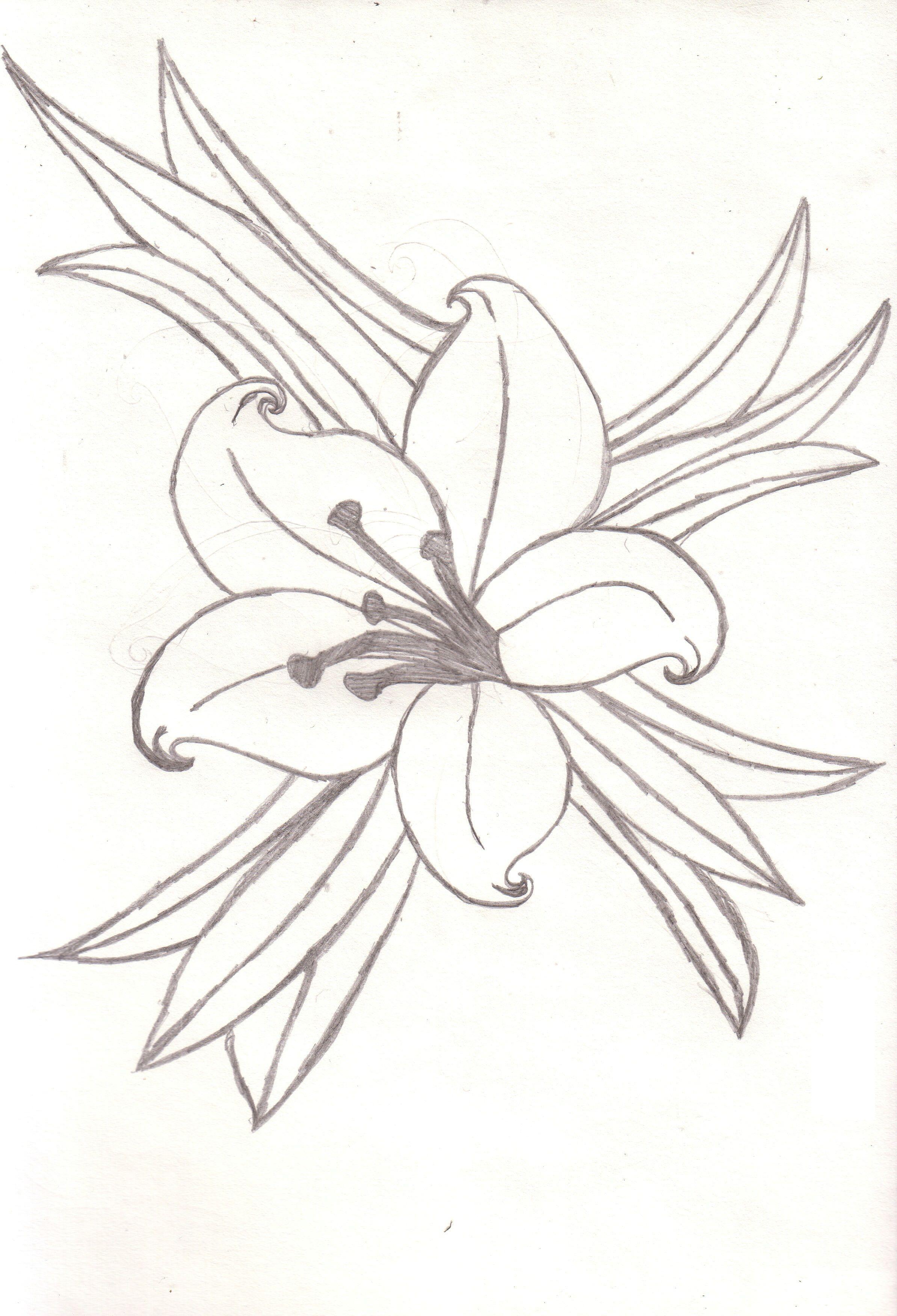 Spider lily tattoo meaning lilies tattoo designs tattoo ideas spider lily tattoo meaning lilies tattoo designs izmirmasajfo
