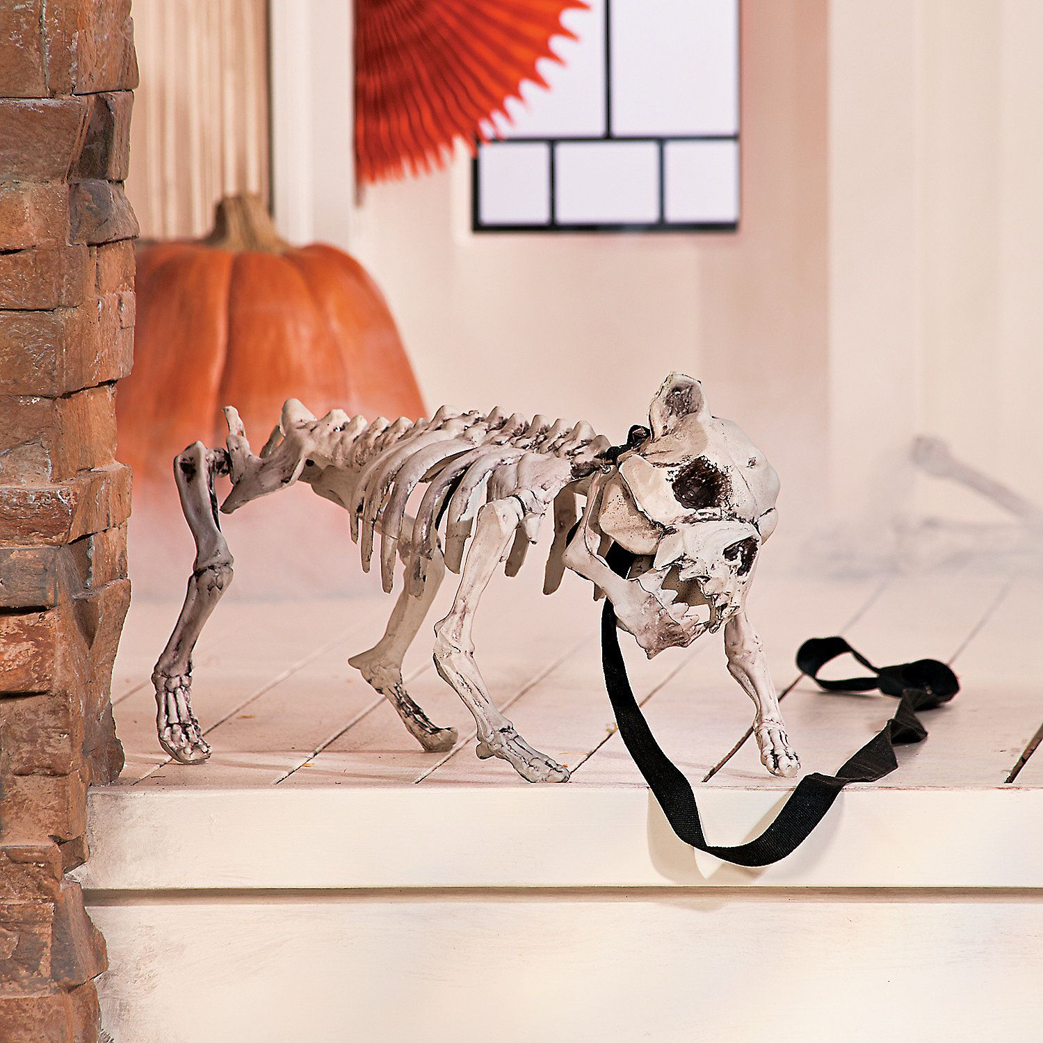 dog skeleton with leash scary halloween decorations halloween decorations halloween holidays