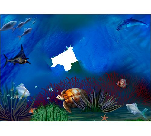 Bellezza del mondo sottomarino