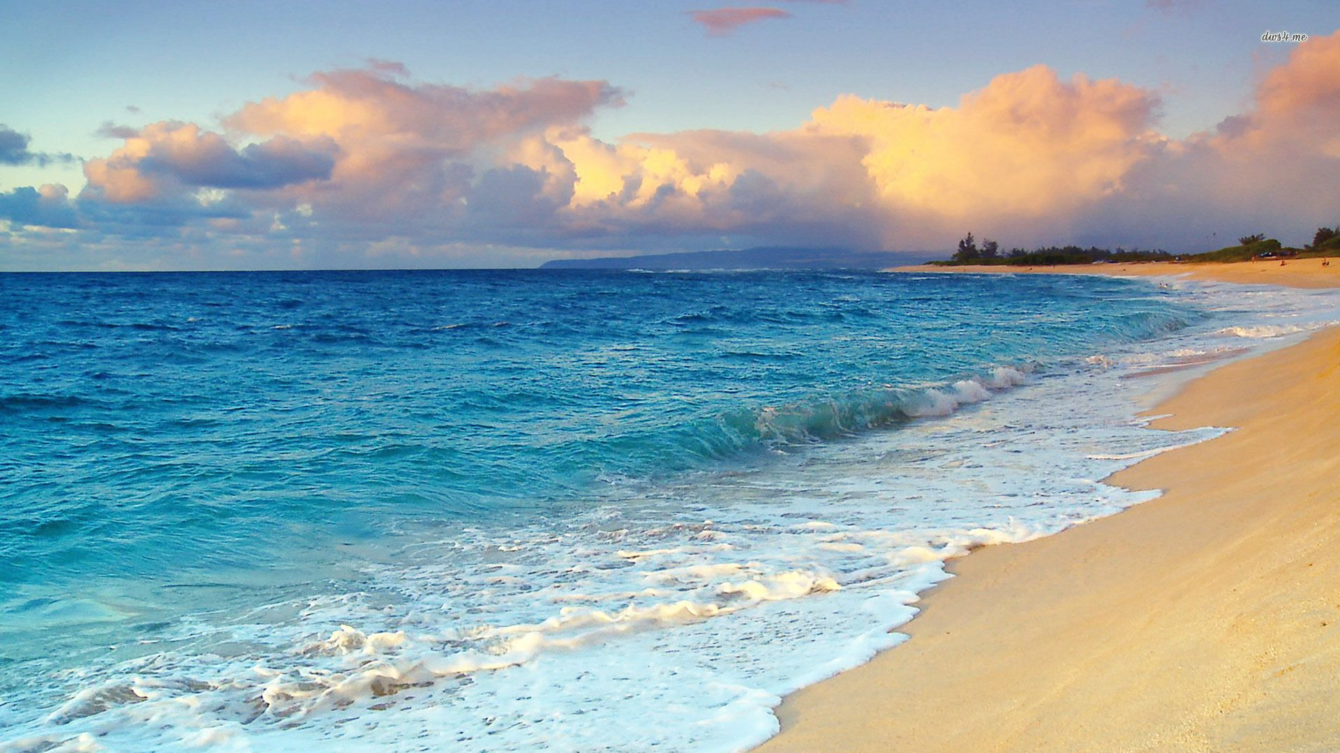Hawaii Beach Wallpaper Hd Free: Hawaii Beach Wallpaper 1280x800