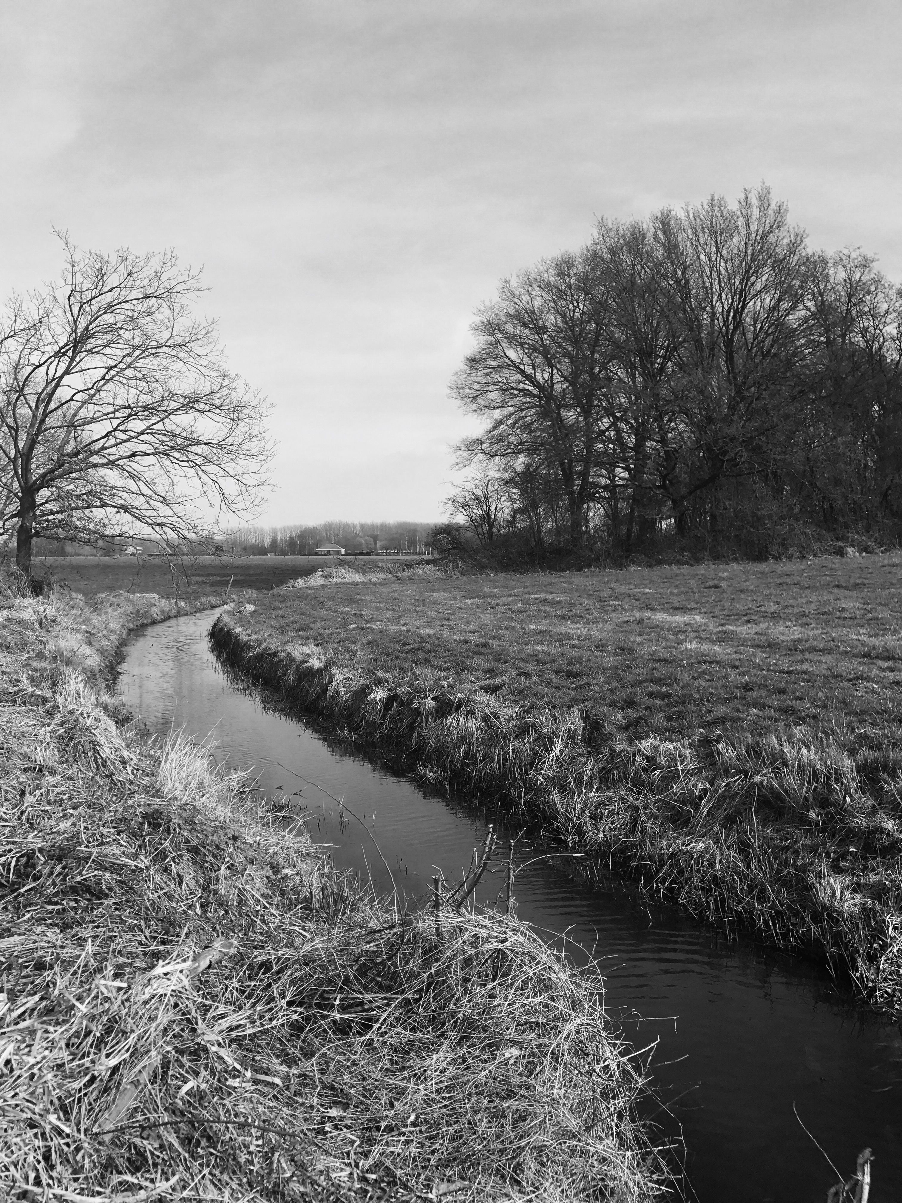 Babbling brook by els Thijs