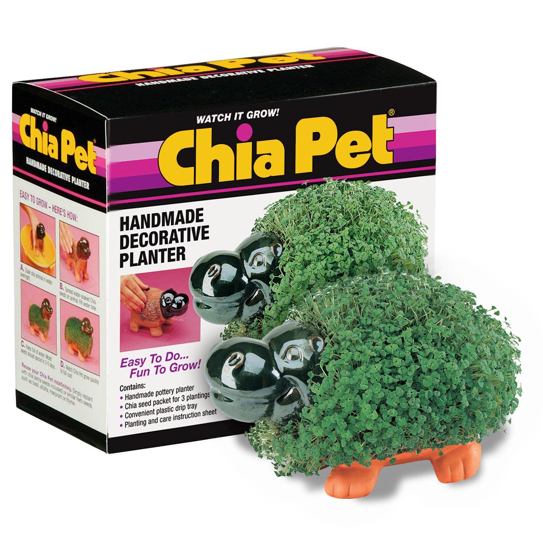 Chia Pet Garden Characters Chia Pet Pets Food Animals