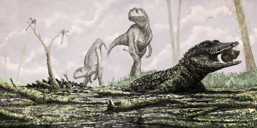 Koumpiodontosuchus and friends Crocodile species